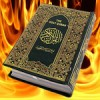 'Koran-Burning' Pastor responds to my letter